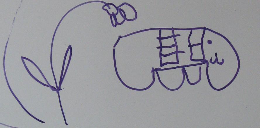 Elefantul cu scară si fereastră