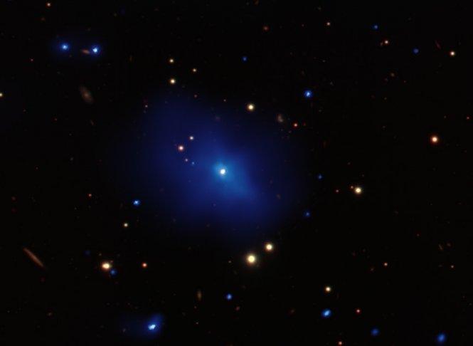 Galaxy Cluster, Quasar 3C 186 Foto: Chandra