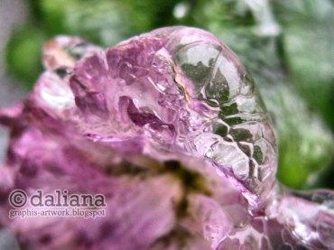 Bijuterie făcută de ploaia înghetată si fotografiată de Daliana