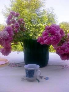 Buchet de flori, cu imaginea unui salcâm tânãr între ele, la Budisteni. FOTO (cu telefonul): Calin Hera
