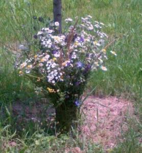Buchet de flori de câmp. FOTO (cu telefonul): Călin Hera