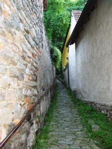 Pe Dunare. Foto Călin Hera