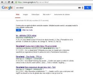 Ce arată Google dacă îl întrebi ce e lerul?