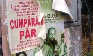 MFC. Combinaţie de afişe pe un stâlp din Sectorul 3, Bucureşti. Foto (cu telefonul): Călin Hera