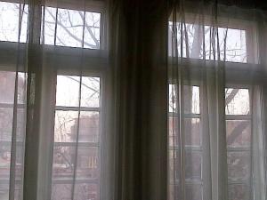 O privire dincolo de perdele, ferestre copaci dezgoliţi şi amurg. Foto: Călin Hera