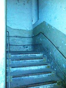 scari11