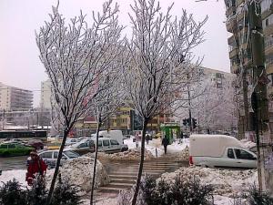 Vedere din Bucureşti. Chiciură. Foto (cu telefonul): Călin Hera
