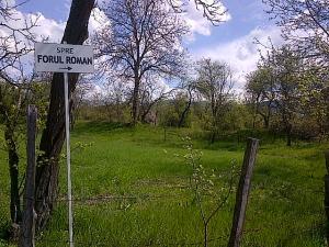 Dincolo de zona în care au fost descoperite zidurile vechii cetăți Ulpia Traiana Sarmizegetusa. Dincoace e indicatorul spre Forul Roman. Foto: Calin Hera (2014)