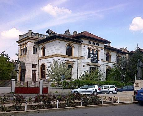Palat de vânzare în zona străzii Atena - Aleea Alexandru. Foto cu telefonul: Călin Hera