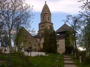 Biserica Densuş, cea mai veche de pe teritoriul României şi unul dintre cele mai stranii monumente, văzută primăvara. Foto cu telefonul: Călin Hera