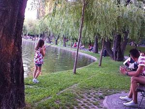 """Vedere din Bucureşti (mfc). În pauza unei """"partide de pescuit"""" la malul lacului IOR. Foto: Călin Hera (cu telefonul)"""