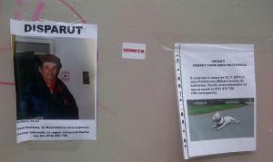 Vedere din Bucureşti. S-au pierdut un om şi-un câine. Foto (cu telefonul): Călin Hera