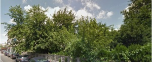 Desişul de pe Agricultori 3-5, aşa cum apare pe Google StreetViw, fotografiat în iulie 2014. Sursa: google