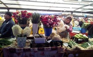 Vedere din Bucureşti. La Piaţa Râmnicu Sărat, înainte de Paşte. Foto: Călin Hera (cu telefonul)