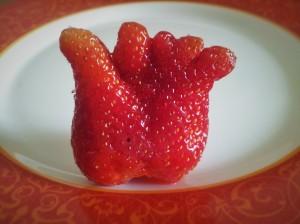 Căpșună cu cinci degete. Foto cu telefonul: Călin Hera