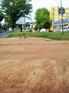 Vedere din București. Imaginea fără cuvinte a unui fost copac din fața UEFS. Foto cu telefonul: Călin Hera
