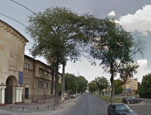Vedere din București. Imagine de la intrarea în UEFS realizată pe vremea când copacul dintre benzile de circulație era în picioare, fain-frumos și deloc uscat. Sursa: Google Street View