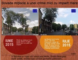 Două diferențe între fotografiile din acest infograf: în a doua, copacul a lăsat locul unor panouri publicitare. Sursa: InfoNaiv