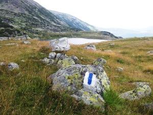 Munții Retezat. Marcaj bandă albastră lângă lacul Bucura. Foto cu telefonul: Călin Hera
