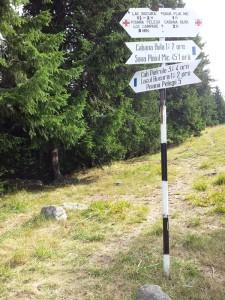 Munții Retezat. Indicatoare turistice la Poiana Pelegii. Foto cu telefonul: Călin Hera