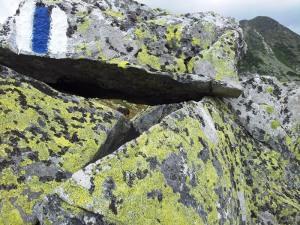 Munții Retezat. Marcaj bandă albastră, care duce la Cabana Pietrele. Foto cu telefonul: Călin Hera