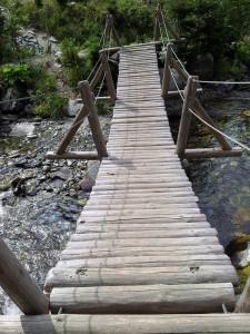 Munții Retezat. Pod peste apa Pelegii. Foto cu telefonul: Călin Hera
