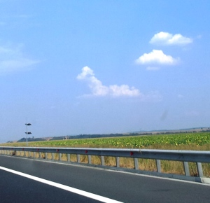 Cățel pe nori, deasupra autostrăzii, între Sibiu și Orăștie, luna august. Foto cu telefonul: Călin Hera