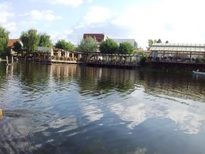 Toamna pe lacul Comana, Giurgiu. Foto cu telefonul: Călin Hera