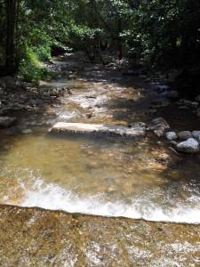 Râu cu mini-gâldane în judeţul Vâlcea. Foto cu telefonul: Călin Hera