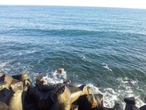 Vedere din Constanța. Valuri și tripozi. Foto cu telefonul: Călin Hera