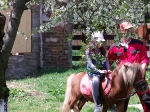 Cal călărit pe domeniul boierilor Golescu din Ștefănești, Argeș. Foto: Călin Hera