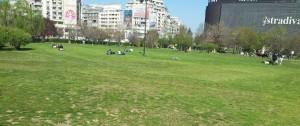Vedere din București. La iarbă verde în Piața Unirii. Foto: Călin Hera