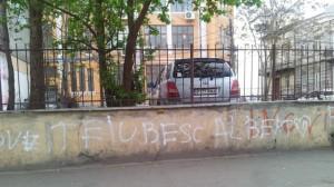 Vedere din București. Declarație de dragoste scrisă pe un gard. Foto: Călin Hera